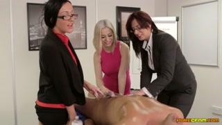 Gatas transformam trabalho em escritório do sexo